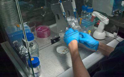 Laboratorium 313 na Festiwalu Przemiany 2019 w Centrum Nauki Kopernik